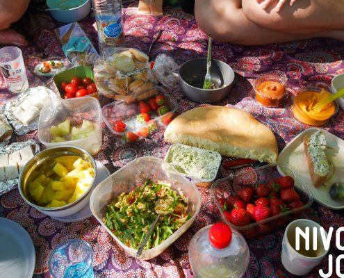 Picknick à la NivonJong