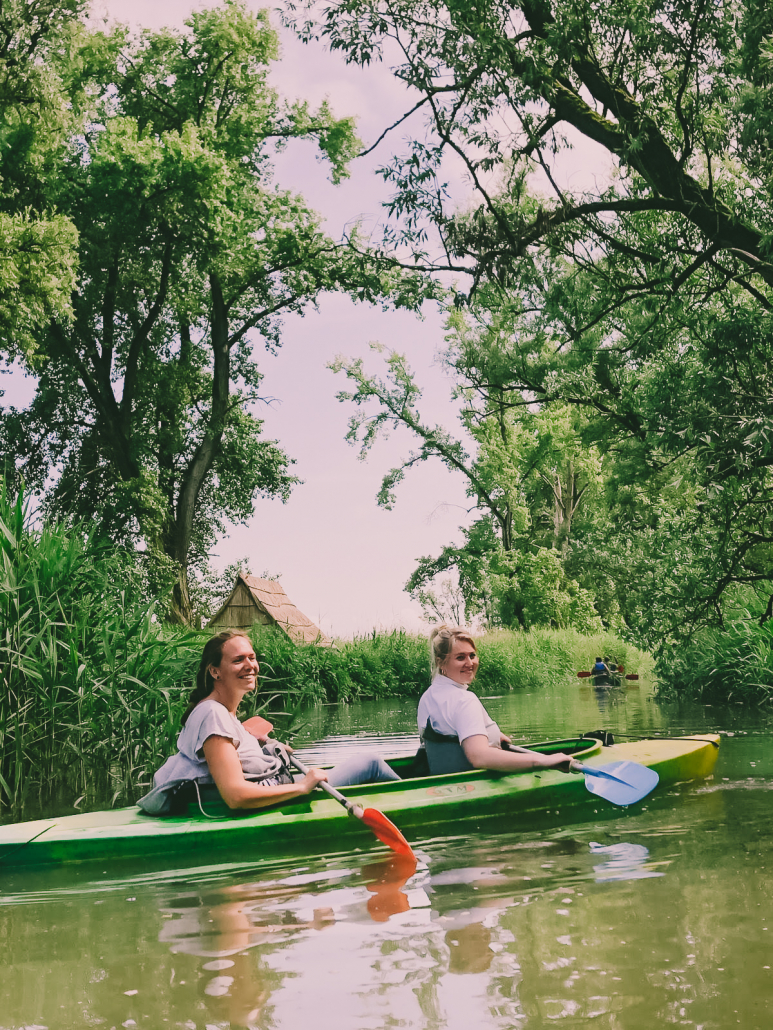 Safari in de Biesbosch 2019
