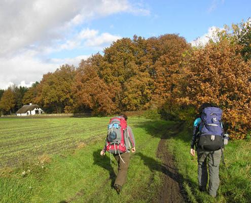 Wandel dit herfstweekend mee op een diverse tocht door de heuvels van Zuid-Limburg en overnacht in Nivon natuurvriendenhuis villa Eikhold